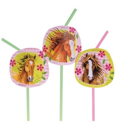 Pailles chevaux (x8)