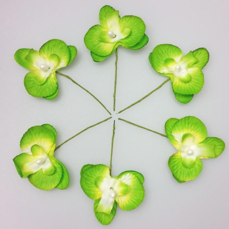 6 mini orchid es de couleur vert anis - La couleur vert anis ...
