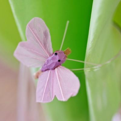 Mini papillons sur pince (x6) parme