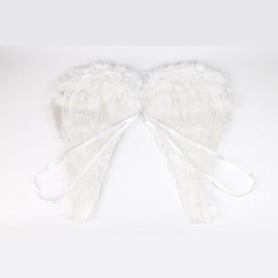 Ailes dange en plumes blanc