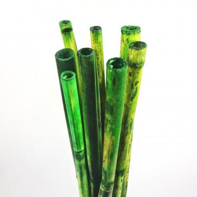 Bambous verts (fagot de 10)