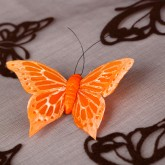 Papillons sur sticker (x6) orange