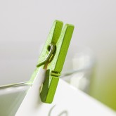 Mini pinces en bois peint vert anis (x24)