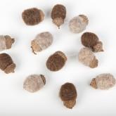 Petits glands chocolat-taupe (x12)