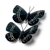 Papillons noirs et dorés sur pince (x2)