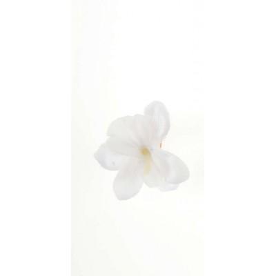Orchidées sur pince (x6) blanches