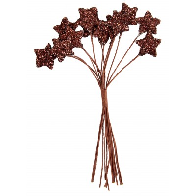 Piquets étoiles pailletées (x12) chocolat