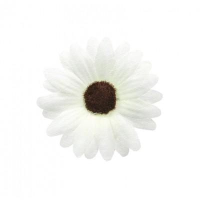 Marguerites blanc (x24)