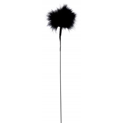 Pomponnette Plume noir