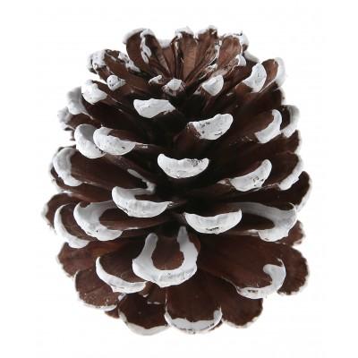 Grande pomme de pin avec effet neige x 4 - Decoration de noel avec des pommes de pin ...