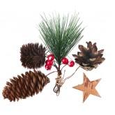 Assortiment forestier de Noël