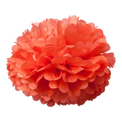 2 pompons Corail