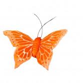 Papillons sur sticker (x6) orange