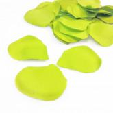 Pétales de roses vert anis et transparents (x120)