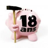 Tirelire cochon 18ans