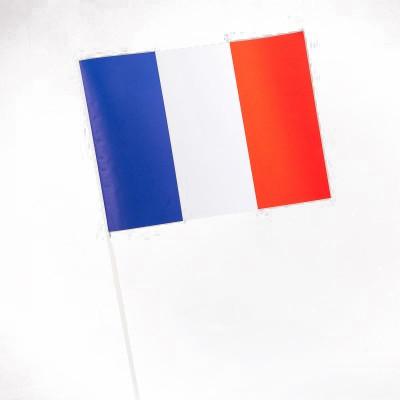 Drapeau Supporters français type