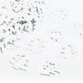 Sachet sapin blanc (x24)