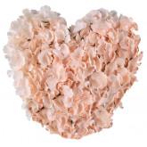 Coeur de fleurs corail