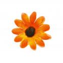 Confetti fleur orange x24