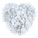 Coeur de fleurs blanc