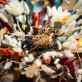 Bouquet plumeaux lagurus ivoire
