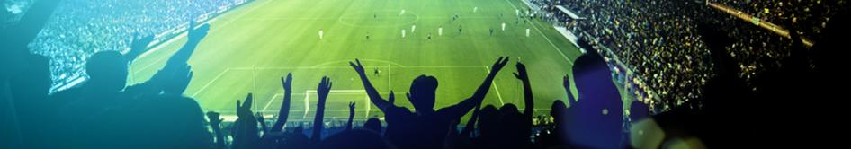 stade euro 2016